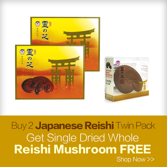 Japaness Reishi Mushroom