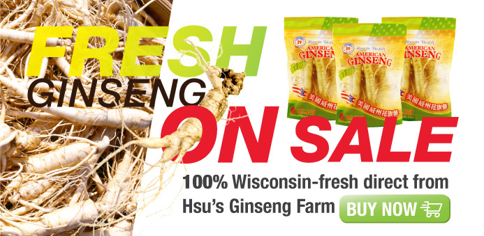 Wisconsin american ginseng for Fresh home login